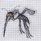 Majo Komár