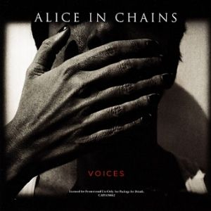 Voices Album
