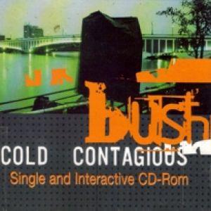 bush warm machine lyrics