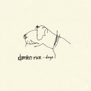 Damien rice coconut skins lyrics
