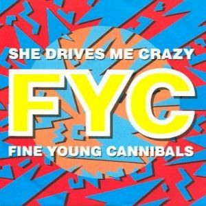 She Drives Me Crazy - album