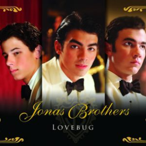 Lovebug Album