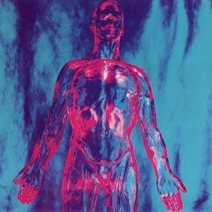 Nirvana akordy a texty p sn zp vn k - Nirvana dive lyrics ...