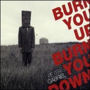 Burn You Up, Burn You Down Album