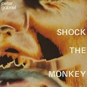 Shock The Monkey Album