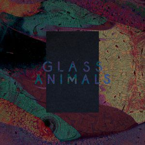 Glass Animals Black Mambo / Exxus, 2013