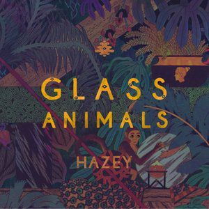 Glass Animals Hazey, 2014