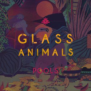 Glass Animals Pools, 2014