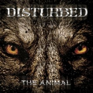 The Animal Album