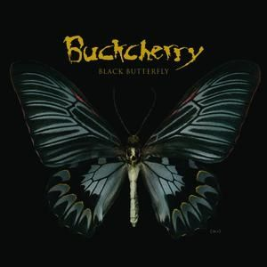 Black Butterfly Album