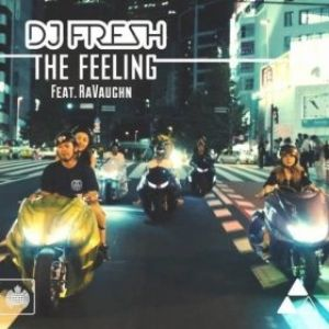 The Feeling Album
