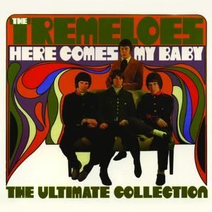 The Tremeloes Here Comes My Baby: The Ultimate Collection, 2004