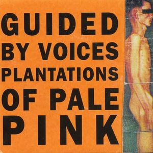 Plantations of Pale Pink Album
