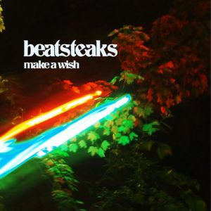 Make A Wish Album