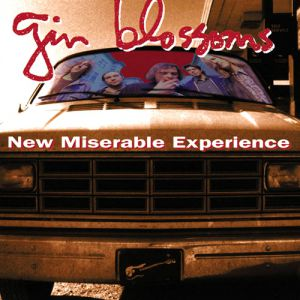 Gin Blossoms New Miserable Experience, 1992