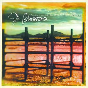 Outside Looking In: The Best of the Gin Blossoms Album
