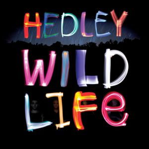 Hedley Wild Life, 2013