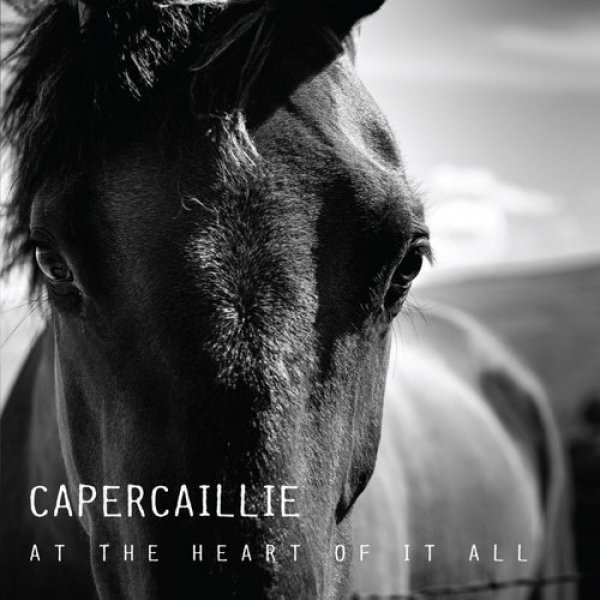 Capercaillie At the Heart of It All, 2013