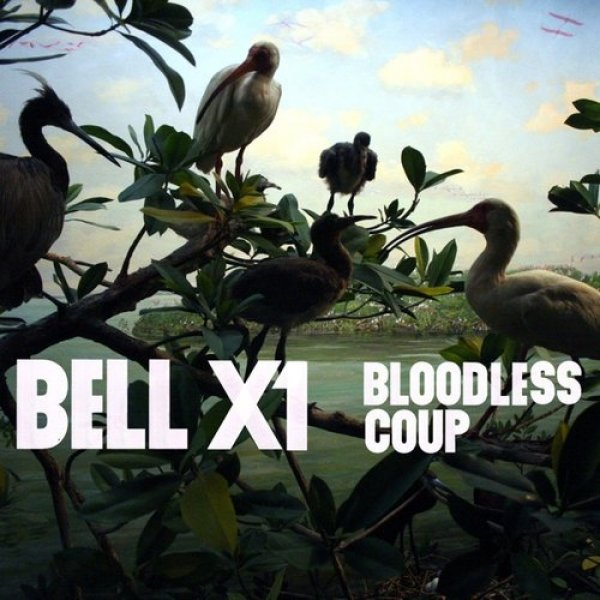 Bell X1 Bloodless Coup, 2011