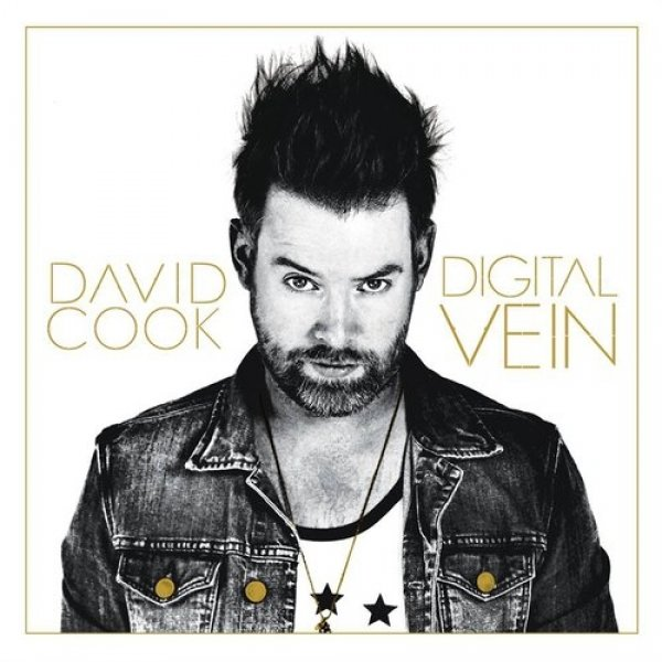 David Cook Digital Vein, 2015