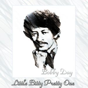 Little Bitty Pretty One Album