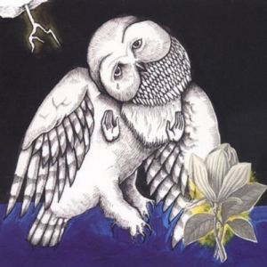 Magnolia Electric Co. Album