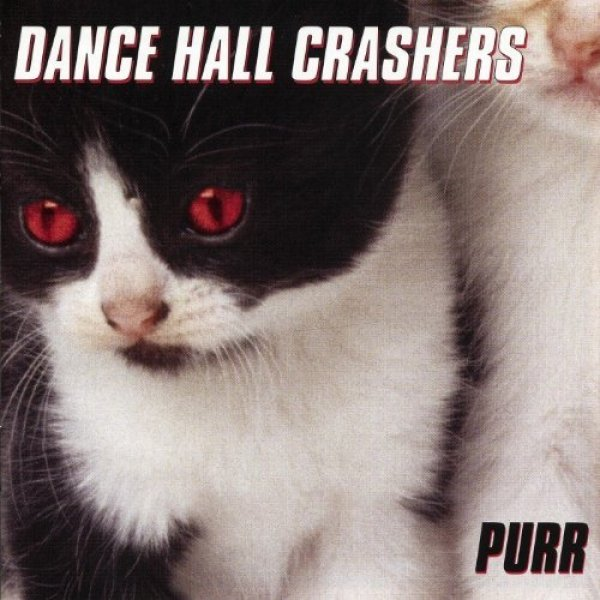 Dance Hall Crashers Purr, 1999