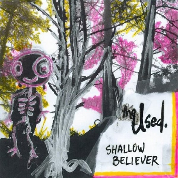The Used Shallow Believer, 2008