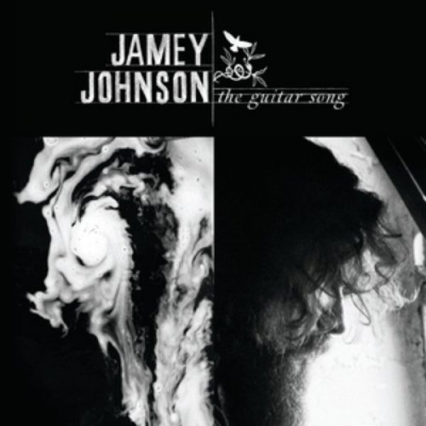 Jamey Johnson The Guitar Song, 2010