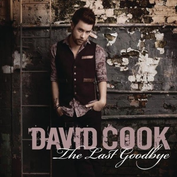 The Last Goodbye Album
